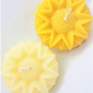 beeswax sunflowers
